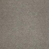 Tuftex Stainmaster Star Power Carpet