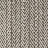 Tuftex Stainmaster Private Eyes Carpet