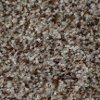 Dixie Stainmaster Relentless Carpet