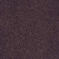 Shaw Satin Blend Carpet