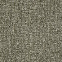 Tuftex Stainmaster Katniss Carpet