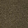 Tuftex Stainmaster Buddy Carpet