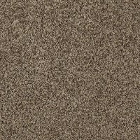 Mohawk Domestic Perfection Carpet