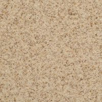 Dixie Stainmaster Oregon Mist Carpet