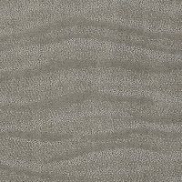 Tuftex Stainmaster Beach Daze Carpet
