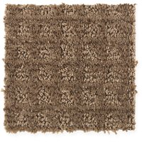 Mohawk Stainmaster Brookshire Carpet