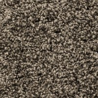 Phenix Stainmaster Roundabout Carpet