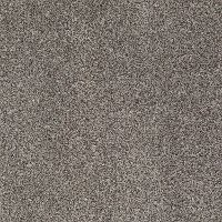 Shaw Dare To Shine Tonal Carpet
