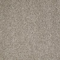 PHL.STAY.LUMINOUS.TONAL Shaw Stay Luminous Tonal Carpet