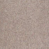 Tuftex Canyon View Carpet