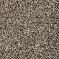 Tuftex Stainmaster Royal Charm I Carpet