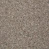 Tuftex Stainmaster Royal Charm II Carpet