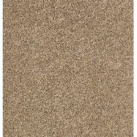 Karastan Upscale Living Carpet