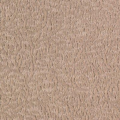 karastan botanical elegance carpet