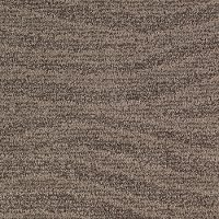 Karastan Natural Influence Carpet