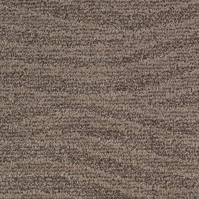 Karastan Natural Influence Carpet