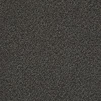 Tuftex Stainmaster Master Title Carpet