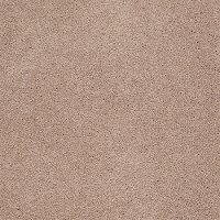 DSW.GOOD.LIFE Tuftex Stainmaster Good Life Carpet