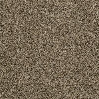 Shaw Possibilities III Carpet