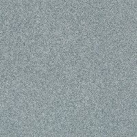 Shaw Stainmaster Subtle Look II Carpet