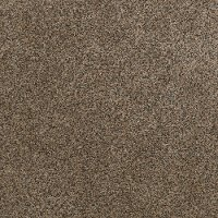 Shaw Stainmaster Timeless Tweed I Carpet