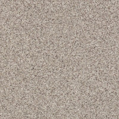 Shaw Vs Stainmaster Carpet Shapeyourminds Com