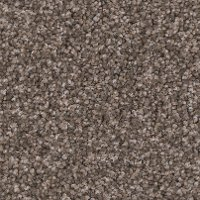 PHN.ENTHRALLED.STOCK Phenix Stainmaster Enthralled Carpet