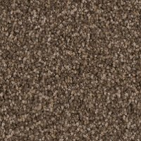 PHN.AWESTRUCK.STOCK Phenix Stainmaster Awestruck Carpet