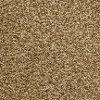 BRE.CAREFREE.STOCK Dixie Stainmaster Carefree Carpet