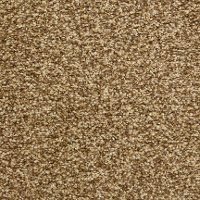 Dixie Stainmaster Carefree Carpet