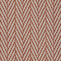 Tuftex Stainmaster Private Eyes II Carpet