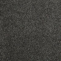 Tuftex Stainmaster Hollister Carpet