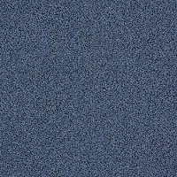 Tuftex Stainmaster Empress Carpet