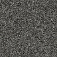 Tuftex Stainmaster Top Star Carpet