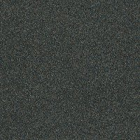 Shaw Stainmaster Tempt Me III Carpet