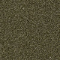 Shaw Stainmaster Tempt Me II Carpet