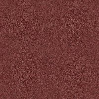 Shaw Stainmaster Simply Stated I Carpet