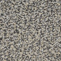 Dixie Stainmaster Magnetism Carpet
