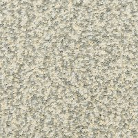 Dixie Stainmaster Main Stay Carpet