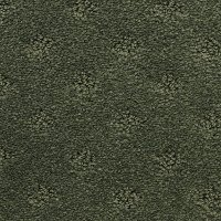 Dixie Stainmaster River Dunes Carpet