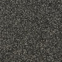 BRE.TIMELESS Dixie Home Stainmaster Timeless Carpet