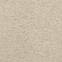 Dixie Stainmaster Arcadian Carpet