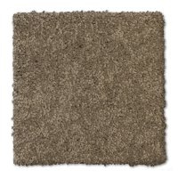 Phenix Stainmaster Art District Carpet
