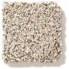 Shaw Mixed Elegance II Carpet