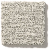 Tuftex Stainmaster New Wave Carpet