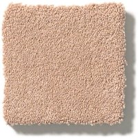 Tuftex Stainmaster Perfect Choice Carpet