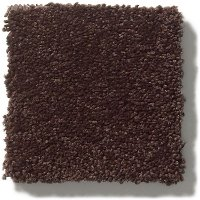 Tuftex Stainmaster Classic Beauty Carpet