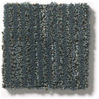 Tuftex Stainmaster Pounce Carpet
