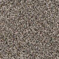 Phenix Stainmaster Zeus Carpet