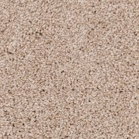 PHN.COASTAL Phenix Stainmaster Coastal Carpet